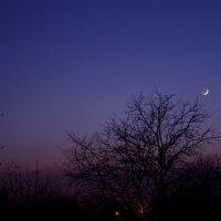 Полумесяц в луне :: Дамир Каримов