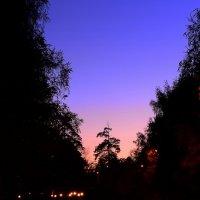 Пастельный закат :: Дамир Каримов