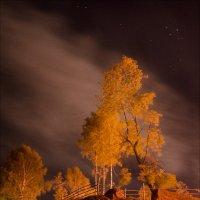 Ночью у реки... :: Евгений Зотов