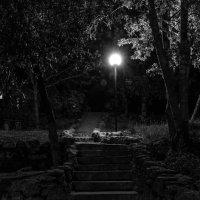 Игра света и тени... :: Ваган Мартиросян