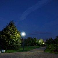 вечером в парке :: Александр Шурпаков