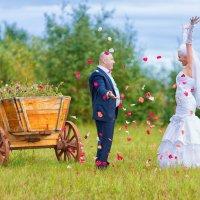 Свадьба Андрея и Елены :: Александр Ласковенков