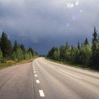 Дорога на север :: Lena Li