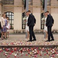 Жениться, жениться, и ещё раз жениться! :: Ирина Данилова