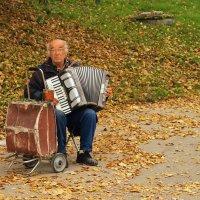 Старый гармонист :: Григорий Азатян