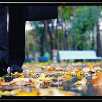 Харьков, Осенний парк :: Nikolai Volobuev