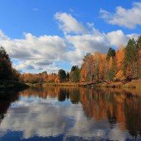 Хорошо осенью на реке! :: Сергей