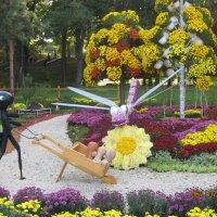 Выставка императорских хризантем. :: Раиса Терехова