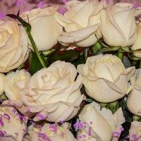 нежные цветы :: Анастасия Норина