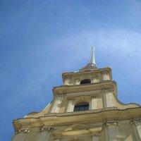 Новые вершины ждут нас! :: Мария Кондакова