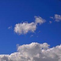 Жизнь облаков :: Never Forever