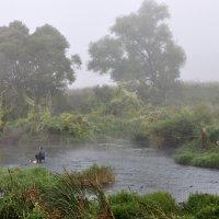 Туман над рекой :: Диана Задворкина