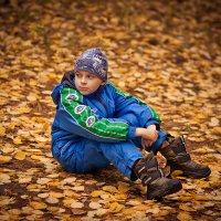 Осень :: Александр Удод