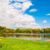 озеро Басов кут, г. Ровно :: Viktor Makarenko