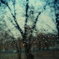 Дождик за окном. :: Света Кондрашова