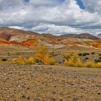 Панорама,Алтайский Марс :: Алексей Мезенцев