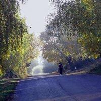 """Ранок...І знову в дорогу..."" :: Ростислав Кухарук"