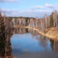 Закончен бал осенний у реки... :: Нэля Лысенко