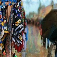 Разноцветный дождь :: Георгий Вересов
