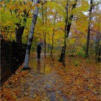 Дождь :: Alexander Hersonski