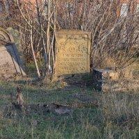 Еврейское кладбище :: Андрей Марченко