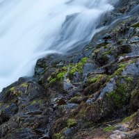 На водопаде Кивач :: Сергей Курников