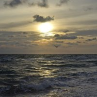 Ветренно на закате ... :: Алекс Б-в
