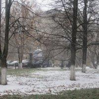 Первый снег :: Лариса