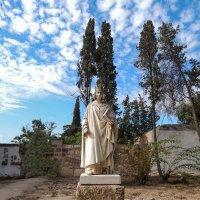 Тунис. Карфаген. Статуя Людовика IX. :: Лариса (Phinikia) Двойникова