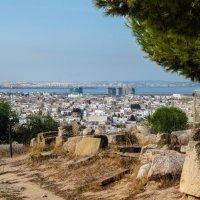 Тунис. Карфаген. Вид на г. Кортаж с холма Бирса. :: Лариса (Phinikia) Двойникова