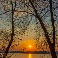 Догорев, как сигарета, на листве закат застыл. :: Виктор Малород
