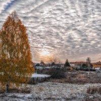 Первый снег. :: Ольга Соколова