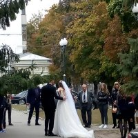 Свадьба :: Татьяна Пальчикова