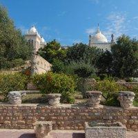 Тунис. Карфаген. Собор Людовика Святого. :: Лариса (Phinikia) Двойникова