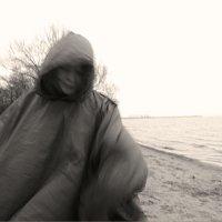Унесенная ветром :: galina bronnikova