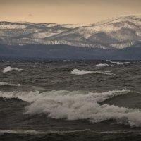 Байкал, волны ноября :: Павел Федоров