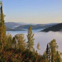 Низовой туман :: Сергей Чиняев