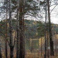 Хмурая осень... :: Зинаида Каширина