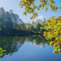 Осенний солнечный денек :: Виктор
