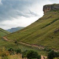 Дорога в горы :: luchnik