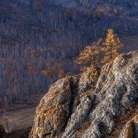 Осень :: Анатолий Соляненко