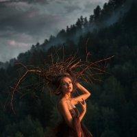 Гуляющее дерево 2 :: Татьяна Мышкина