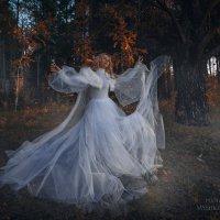 В лесу :: Татьяна Мышкина
