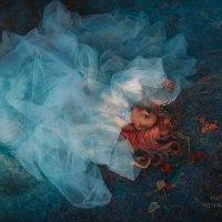 Туман :: Татьяна Мышкина