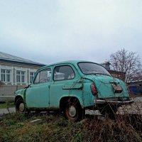 Природа забирает. :: Николай Масляев