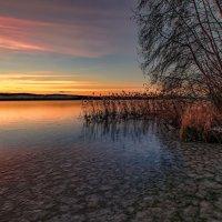 Краски утренней зари :: Vladimbormotov