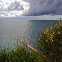 Майское море :: Леонид