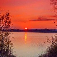Село солнце на горизонт... :: Виктор Малород