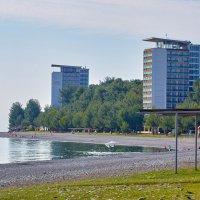 Осень в Абхазии :: Николай Николенко