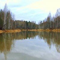 Осенний этюд :: Нэля Лысенко